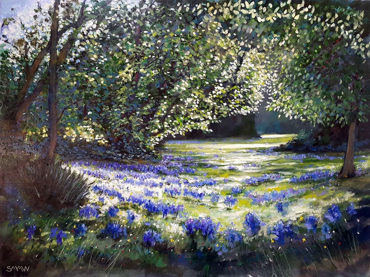Bluebell Path - Robert Shaw