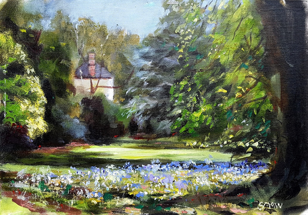 Bluebell glade at Malahide - Robert Shaw