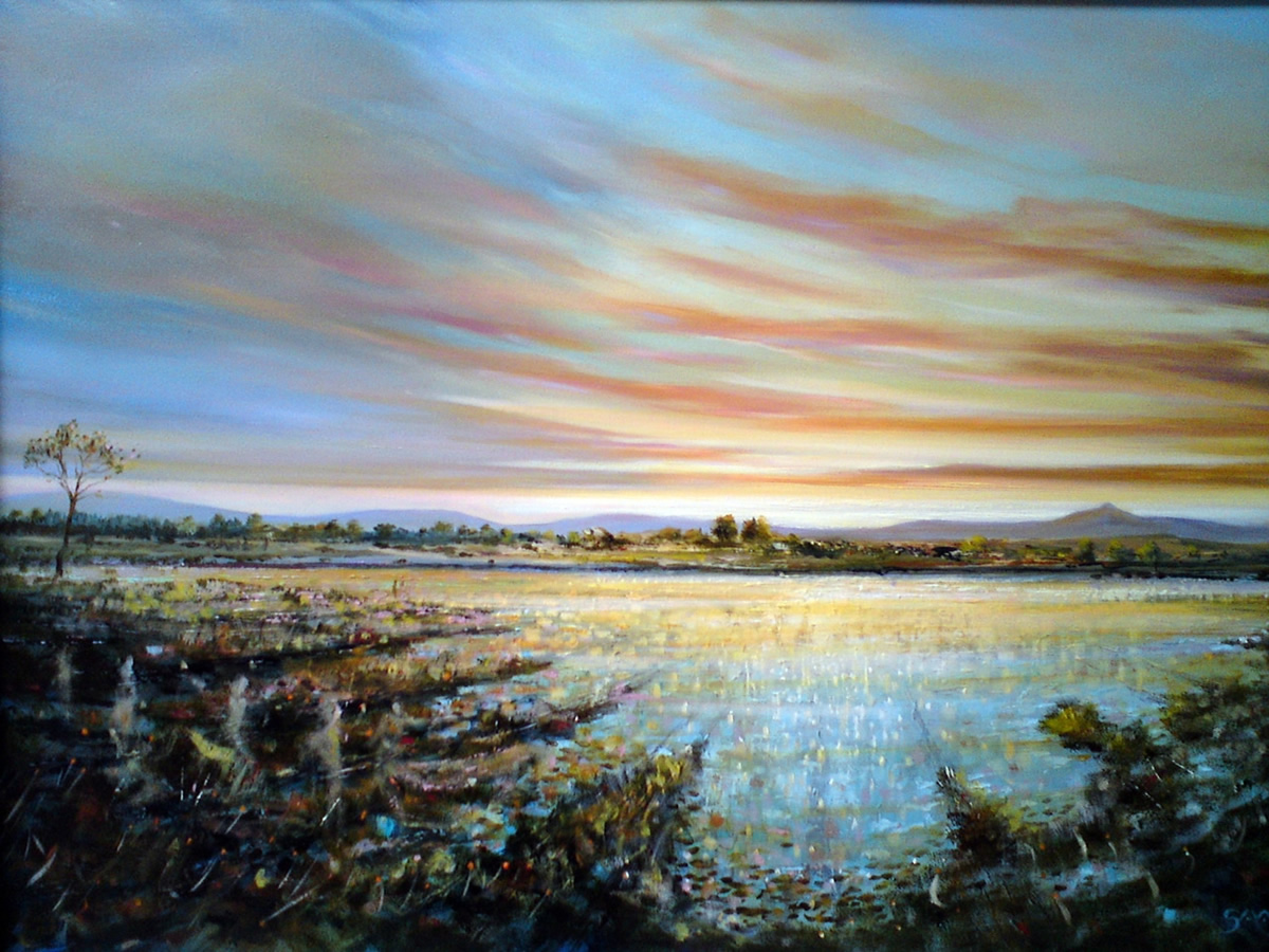 Broadlough Solace - Robert Shaw