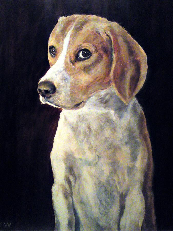 Beagle - Robert Shaw