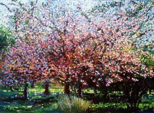 Talbot's Blossom - Robert Shaw