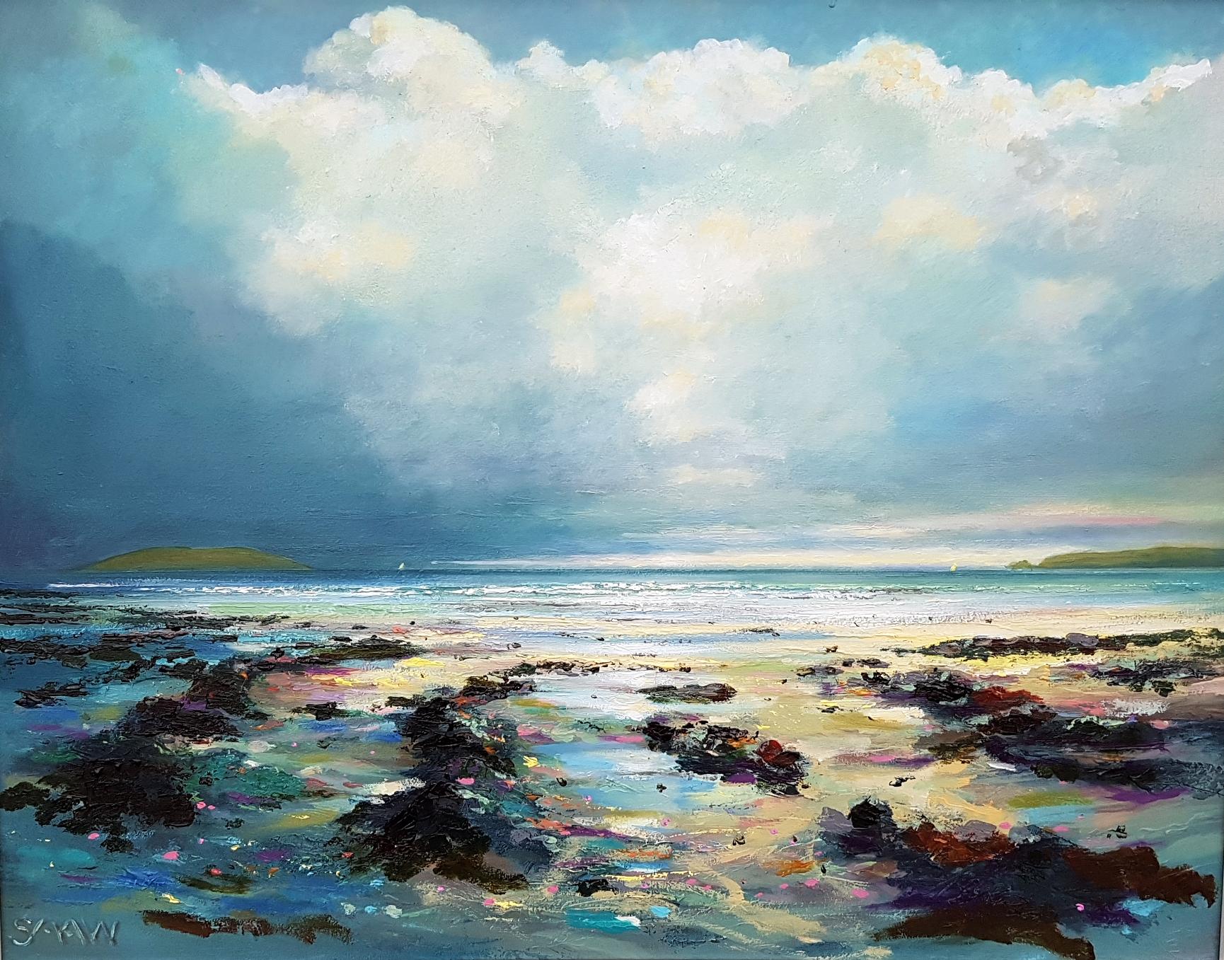 Rain at Lambay - Robert Shaw